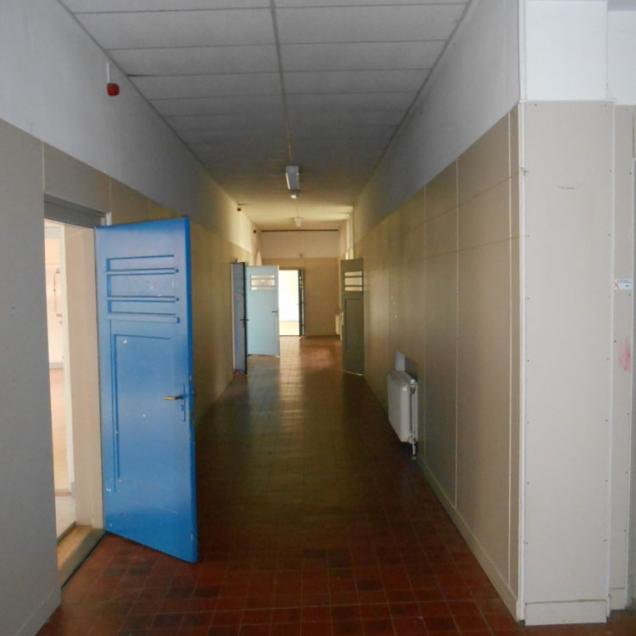 11 DSCN3118